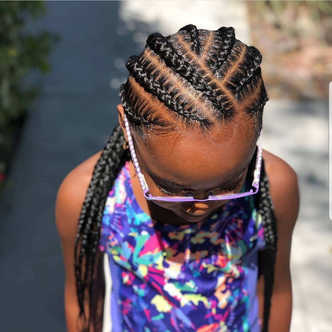 Braided Hairstyles For Kids: 43 Hairstyles For Black Girls - Click042